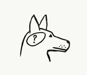 Dog brain question