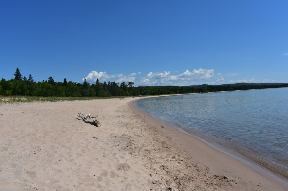 a white sand beach between blue water and a pine and spruce forest.
