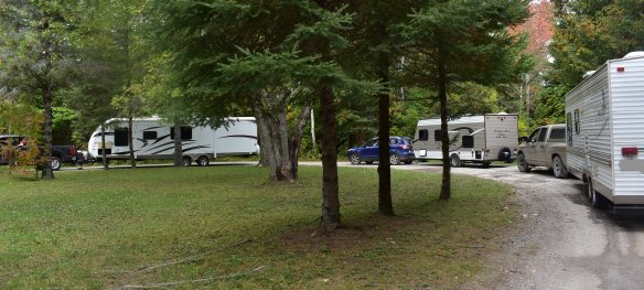 a curved driveway in a field of green grass and pine trees, with three white travel trailers hooked up to family trucks.