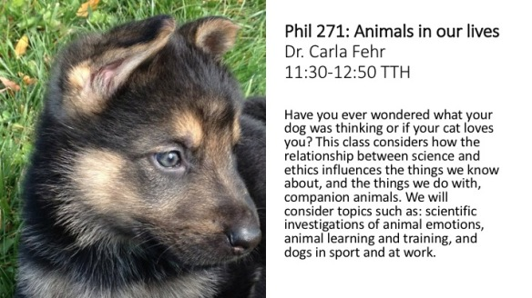 Phil 271 Animals in our lives